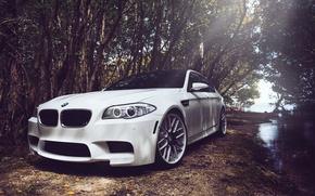 Picture white, bmw, BMW, white, f10