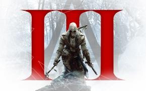 Picture Ubisoft, Mohawk, Independence, Assassin's Creed 3, Connor Radunhageydu, Animus