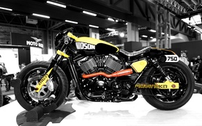 Picture design, Harley Davidson, 750, Street Factory Racer