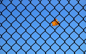 Picture the sky, sheet, mesh