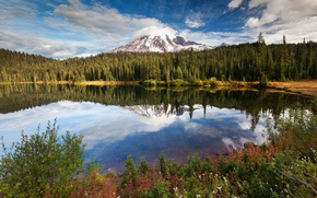 Picture forest, the sky, trees, mountains, nature, lake, reflection, panorama