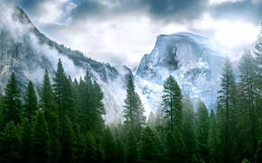 Picture forest, mountains, Nature