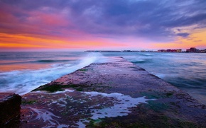 Picture sea, the sky, water, clouds, flowers, sunrise, colors, sky, sea, water, clouds, sunrise