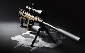 Picture sight, rifle, muffler, sniper