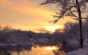 Picture winter, frost, trees, sunset, river, the evening