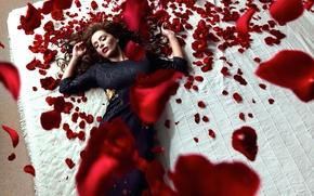 Picture girl, roses, petals, Daniel Ilinca, Red Roses