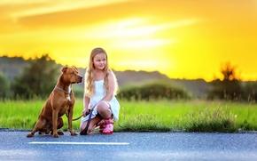 Picture asphalt, dog, girl, Dog and Girl