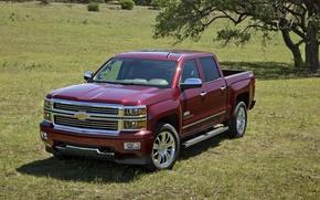 Picture Chevrolet, pickup, 1500, Silverado