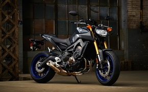 Picture wallpaper, logo, Yamaha, motorcycle, superbike, rust, strong, motorbike, comfortable, beauty on wheels, hd, Yamaha FZ-09, …