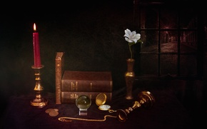 Picture flower, watch, books, candle, coins, still life