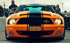 Picture Mustang, Cobra, Sport