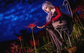 Picture flower, night, Lily, stockings, doll, chair
