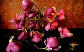 Picture flowers, petals, vase, still life