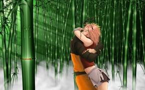 Picture fog, blood, meeting, tears, hugs, rays of light, Sakura Haruno, Naruto Uzumaki, Naruto Shippuden, bamboo …