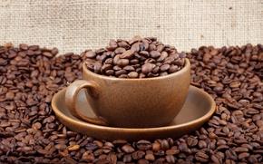 Wallpaper macro, mug, mood, grain, Cup, mugs, grain, coffee, bags, mood, Cup, bag