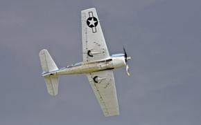 Picture airplane, aviation, The Grumman F6F Hellcat
