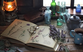 Picture flowers, lamp, glasses, drawings, book, bottle, still life, vintage, lavender, herbarium