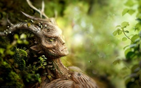 Picture forest, flowers, moss, plants, being, bees, bark, the elder scrolls, skyrim, spriggan