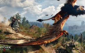 Picture horse, chase, the Witcher, rpg, Geralt, the wild hunt, wild hunt, the witcher 3, cd ...