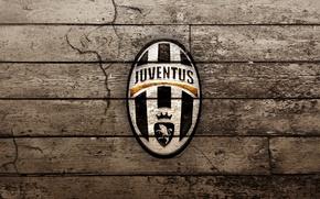 Picture football, club, Juventus, Juventus