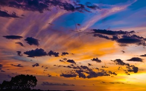 Wallpaper tree, the sky, clouds, sunset