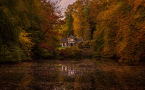 Picture autumn, forest, nature, lake, house