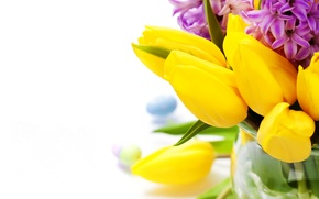 Picture photo, Flowers, Tulips, Closeup, Hyacinths