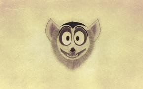 Picture minimalism, mordaha, Madagascar, Madagascar, a ring-tailed lemur, King Julian