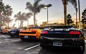 Picture Lamborghini, gallardo, murcielago, supercars, aventador