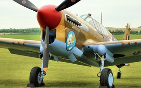 Picture fighter, the airfield, Warhawk, P-40F