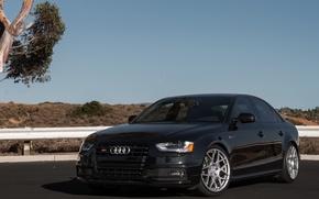 Picture Audi, Corsa, Wheels, Exhaust, HRE