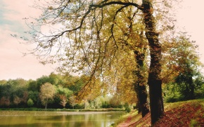 Picture autumn, forest, lake, Park