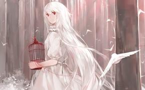 Picture forest, girl, birds, cell, art, white hair, thread, cotta