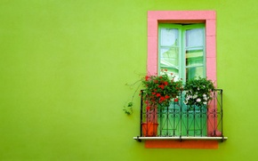 Picture green, wall, Window, balcony