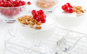 Picture dessert, currants, granola, Panna cotta