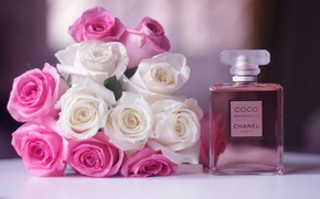 Picture flowers, roses, bouquet, pink, white, perfume, Chanel Coco Mademoiselle