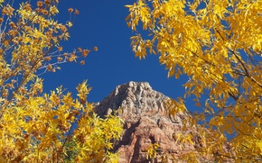 Picture autumn, the sky, leaves, trees, rock, mountain