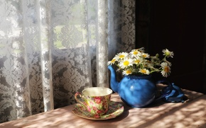Wallpaper chamomile, house, window, Cup