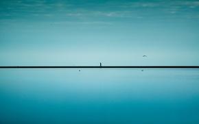 Picture bird, people, horizon