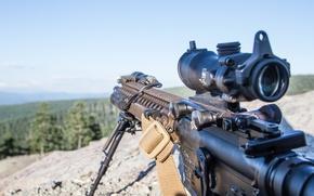 Picture rifle, assault, assault rifle, AR-15