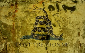 Picture snake, Metallica, Don't Tread on Me