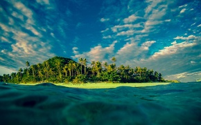 Picture palm trees, the ocean, island