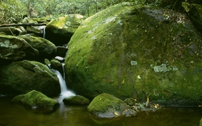 Picture stones, waterfall, moss