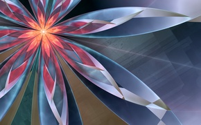 Picture flower, abstraction, glow