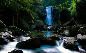 Picture water, waterfall, forest, water, waterfall, stones