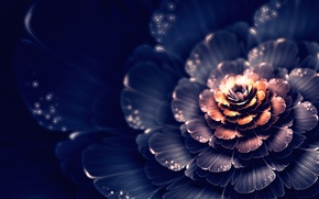 Wallpaper graphics, bokeh, fractal, light, abstraction, flower, spot