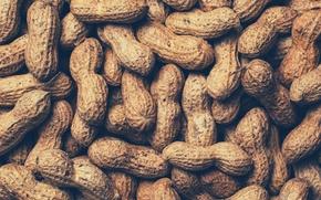 Wallpaper walnut, nuts, peanuts, peanuts