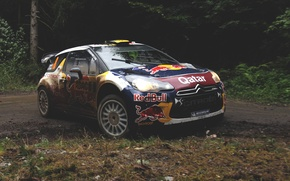 Picture forest, race, red, rally, rally, wrc, citroen, race, Citroen, bull, ds3