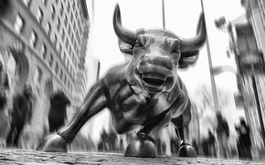 Picture New York, USA, bull, Wall street, financial district