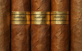 Picture glamour, havana, cigars, texture